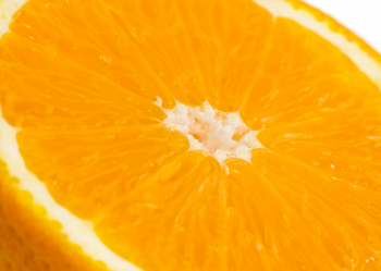 JUICY ORANGE_PRINTED PICTURE